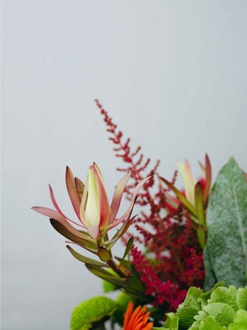 Flores variadas a domiciliobonitas